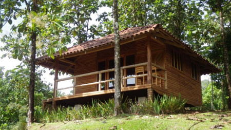 Macaw Lodge _smallimage