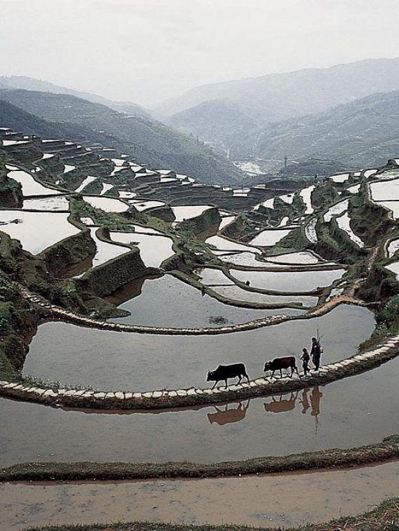 Sites majeurs pour un voyage en Chine