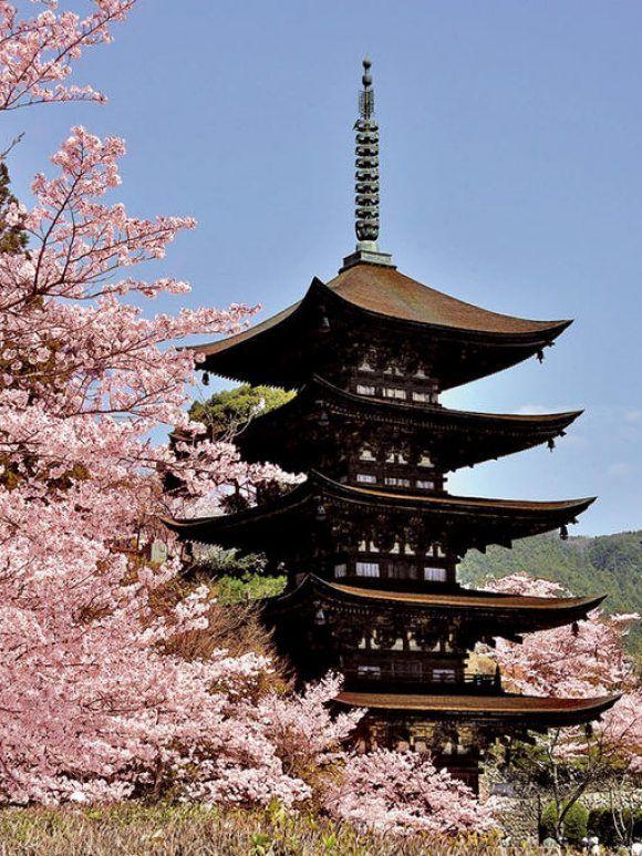 Y a-t-il une relation particulière du Japon et des Japonais à la nature ?