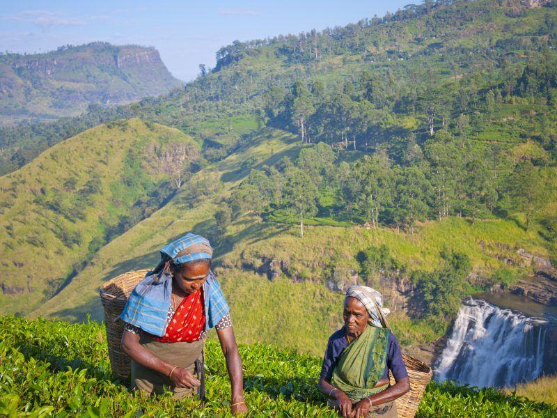 Images du Sri Lanka le 22 janvier