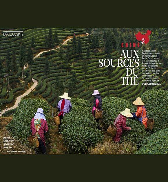 Chine - Aux sources du thé avec le magazine GEO