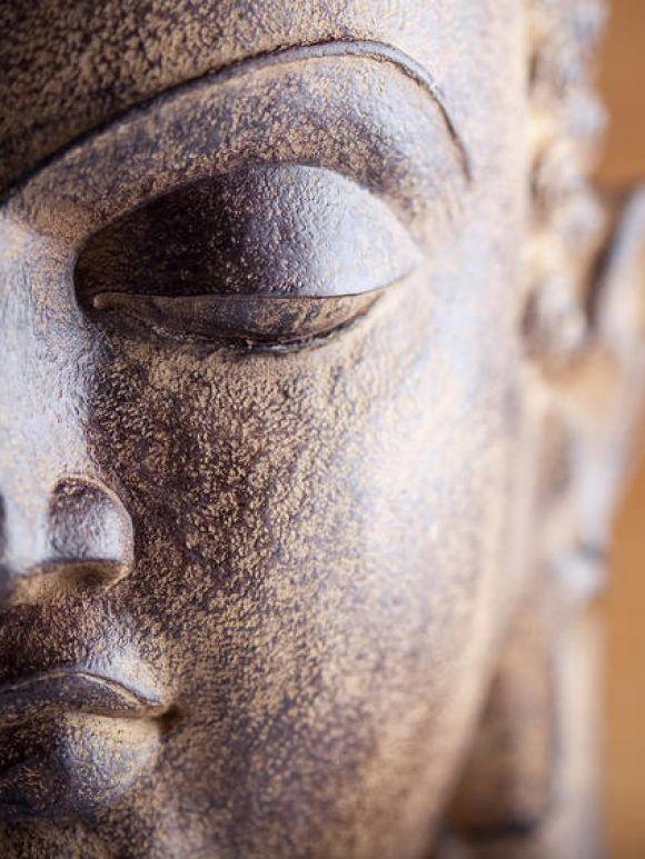 L'art pâla : ultimes feux du bouddhisme indien