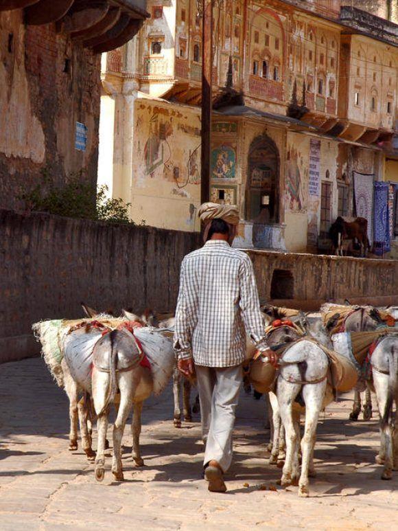Rajasthan et vallée du Gange (4 décembre)