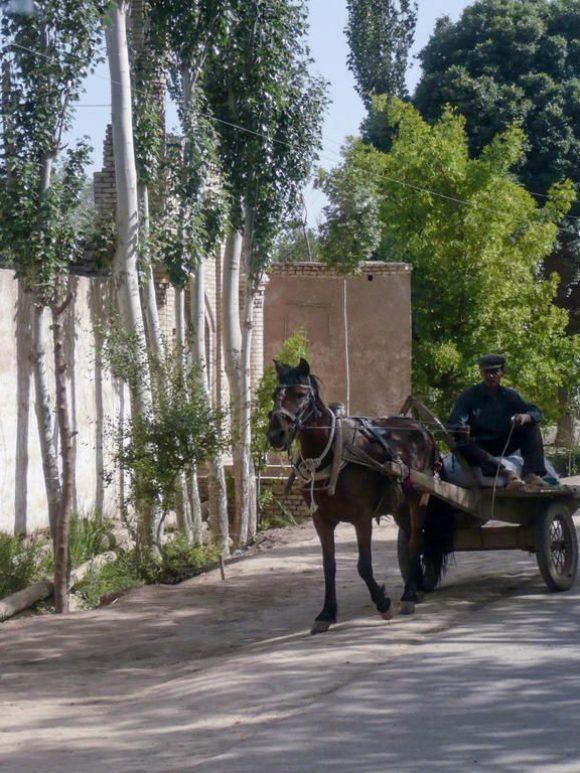 Le Xinjiang