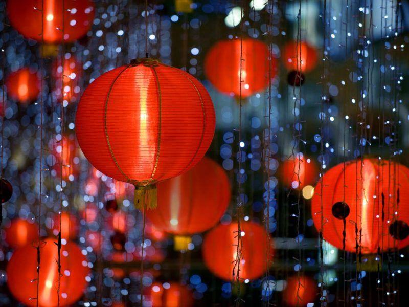 Nouvel an chinois : Année Cochon de Terre